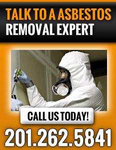 Asbestos Removal NJ | Asbestos Abatement NJ - cta